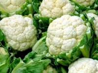 Dam sezonową pracę w Niemczech zbiory warzyw z upraw polowych od zaraz