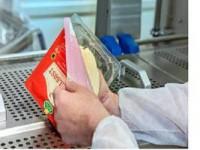 Praca w Niemczech pakowanie sera od zaraz bez znajomości języka Darmstadt