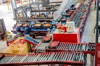 Oferta fizycznej pracy w Niemczech bez języka sortowanie owoców od zaraz Düsseldorf