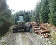 Od zaraz sezonowa praca w Niemczech w leśnictwie dla Polaków Erfurt