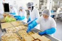 Niemcy praca bez znajomości języka na produkcji kanapek dla par Düsseldorf