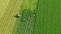 Oferta sezonowej pracy w Niemczech przy zbiorach warzyw bez języka Schöpstal
