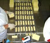 Praca w Niemczech bez znajomości języka dla par pakowanie sera Drezno