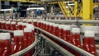 Niemcy praca na produkcji keczupu bez znajomości języka Berlin od zaraz