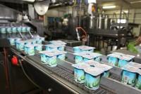 Bez języka praca w Niemczech dla par na produkcji jogurtów Berlin 2015