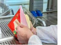 Dortmund praca w Niemczech przy pakowaniu sera dla par bez języka