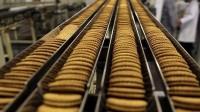 Kolonia oferta pracy w Niemczech od zaraz bez języka przy pakowaniu ciastek