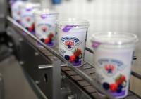 Od zaraz Niemcy praca bez znajomości języka produkcja jogurtów Düsseldorf