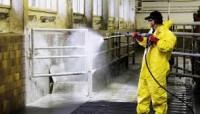 Niemcy praca fizyczna – mycie obór i kurników bez języka w Herzlake