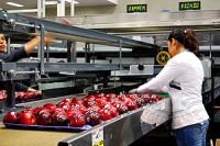 Dla par fizyczna praca Niemcy bez znajomości języka sortowanie owoców Kolonia
