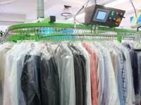 Pracownik pralni przemysłowej dam fizyczną pracę w Niemczech, Lemgo