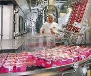 Dam pracę w Niemczech dla par na produkcji jogurtów bez języka 2017 Stuttgart