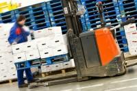 Praca w Niemczech bez języka na magazynie w Bottrop jako Komisjoner – pracownik wydania towaru