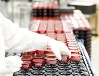 Niemcy praca od zaraz bez znajomości języka przy pakowaniu kosmetyków w Weilerswist