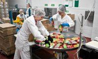Niemcy praca od zaraz bez znajomości języka przy pakowaniu żywności na produkcji, Bielefeld