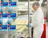 Berlin praca w Niemczech przy pakowaniu sera od zaraz bez języka 2019 Berlin