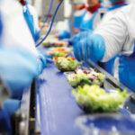 Bez języka oferta pracy w Niemczech przy produkcji sałatek od zaraz w Schwalmtal