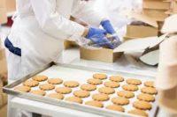 Niemcu praca przy pakowaniu ciastek od zaraz w firmie z Meppen 2019