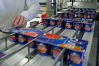Od zaraz praca Niemcy bez znajomości języka na produkcji jogurtów 2021 Stuttgart