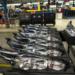 produkcja lamp samochodowych praca zagranica 2020 od zaraz