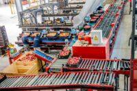 Bez języka fizyczna praca Niemcy od zaraz przy sortowanie owoców w Hanowerze