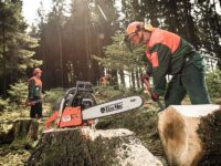 Oferta sezonowej pracy w Niemczech od zaraz bez języka dla pilarza przy ścinaniu drzew