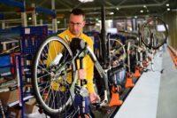 Bez języka oferta pracy w Niemczech od zaraz dla par produkcja rowerów 2021 Norymberga