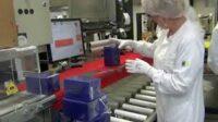 Bez znajomości języka od zaraz Niemcy praca dla par pakowanie kosmetyków i leków w Muggensturm