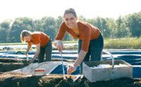 Od zaraz sezonowa praca w Niemczech bez języka przy zbiorach szparagów 2021 Eystrup